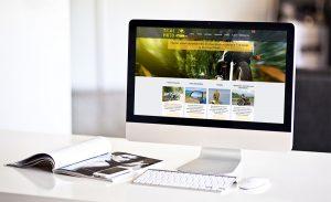 Обновление и редизайн вашего сайта